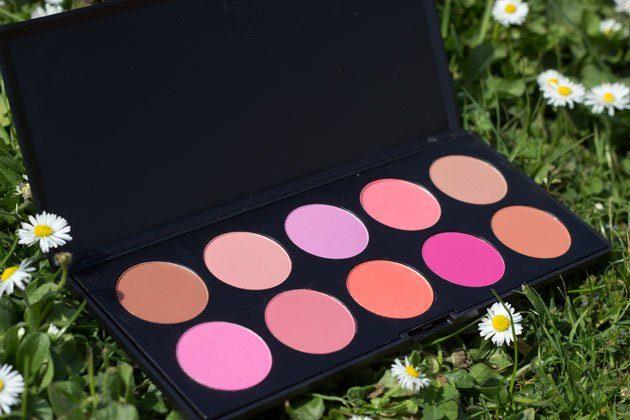 palette-blush-bh-cosmetics