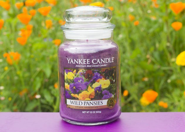 wild-pansies-yankee-candle